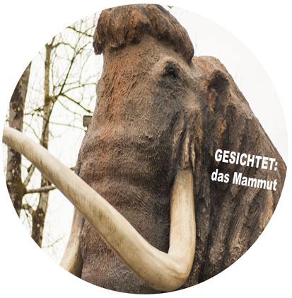 Mammut_groß_28_2