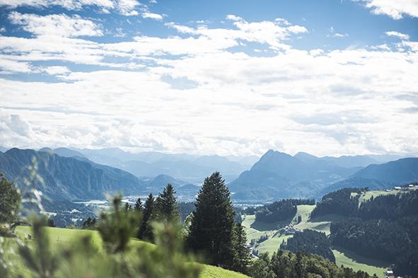 Wildbichleralm_Ausblick