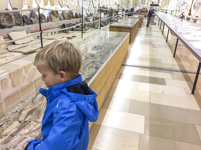 UrweltmuseumRaubling